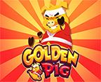 Golden Pig TTG